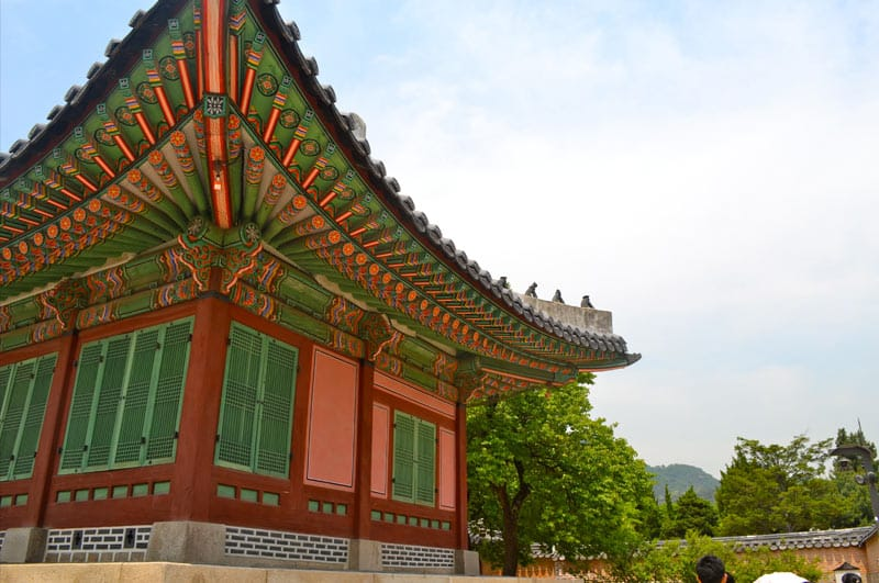 5 Things No One Tells You About Teaching in South Korea