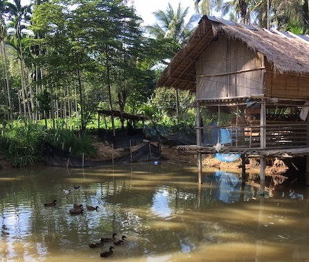 Pala-U Orphanage