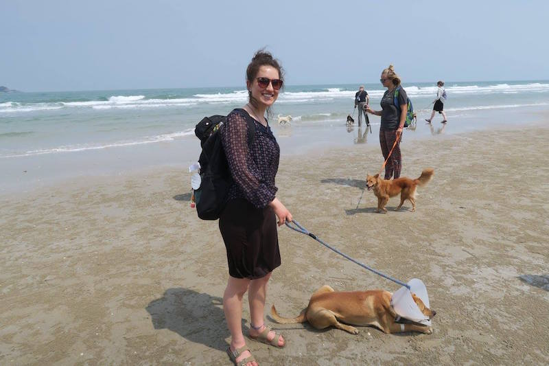 walking the dogs on the beach in Thailand