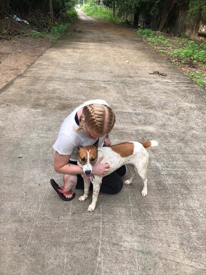 Rescue Paws volunteer with dog