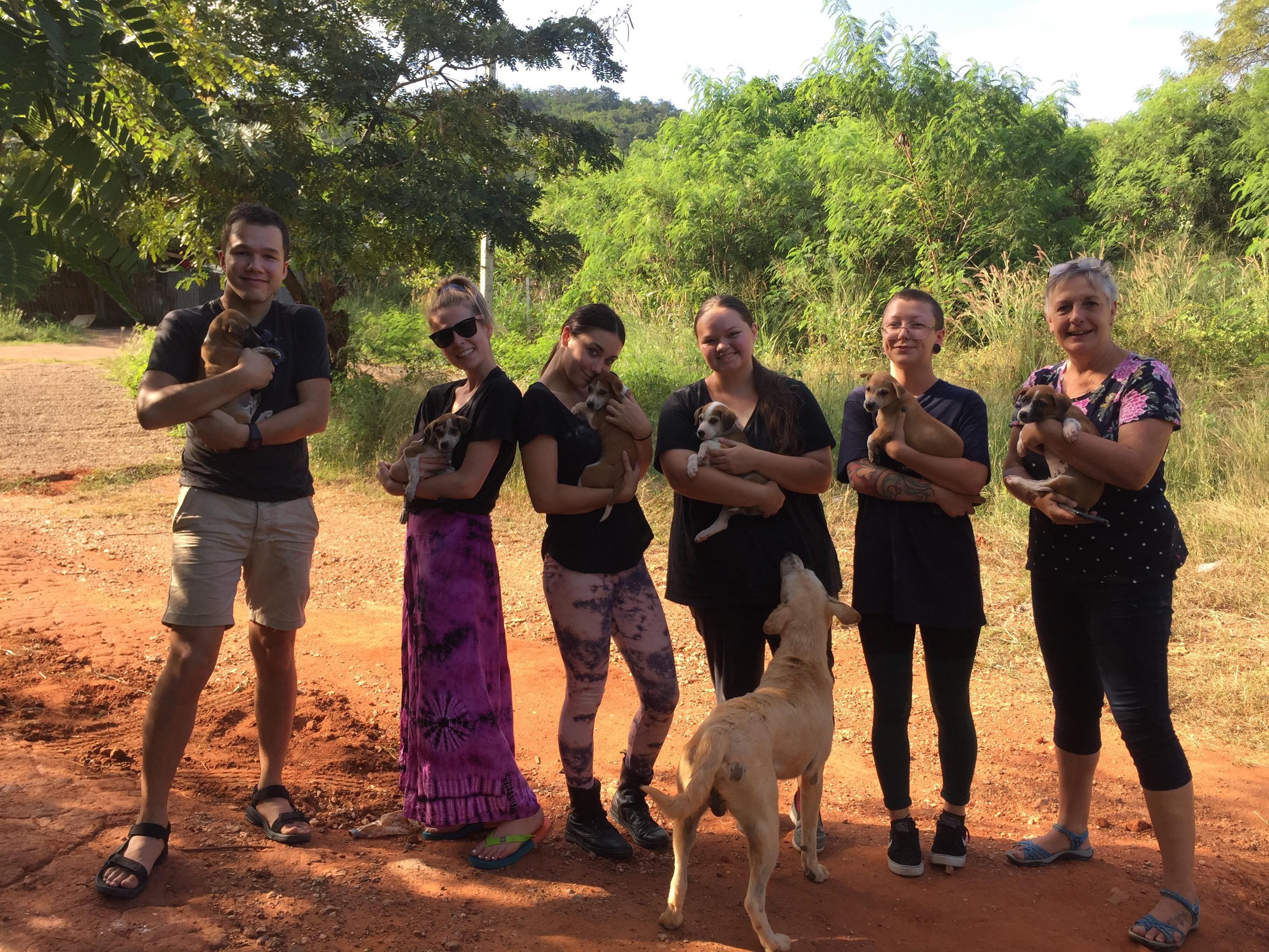 Volunteer in Thailand with Rescue Paws