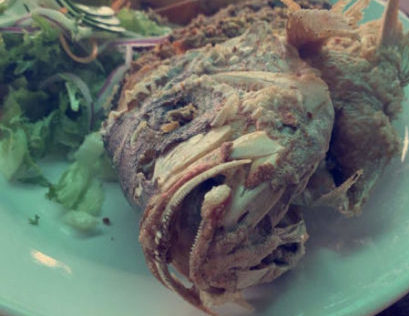 One of the many delicacies, Pargo Fish, you can try while in Costa Rica