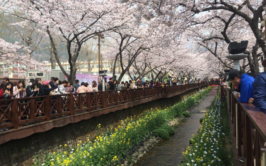 What Are Teaching Jobs in Korea Outside of Seoul Like?